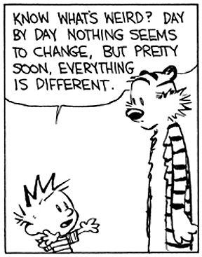Calvin and Hobbes - I want to get a color print of this and hang it in the house.