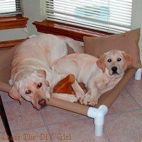 PVC Dog Cot Tutorial - The DIY Girl http://www.thediygirl.com/pvc-dog-cot-tutorial-2/