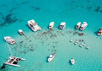"""Stingray City is a world famous dive and snorkel site on Grand Cayman, Cayman Islands. Acclaimed as the """"The world's greatest 12-foot dive!"""""""