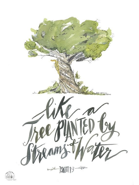 Like  a Tree planted by Streams of Water Psalm 1:3  by truecotton