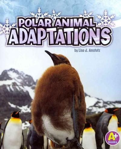 1000+ ideas about Animal Adaptations on Pinterest | Food ...