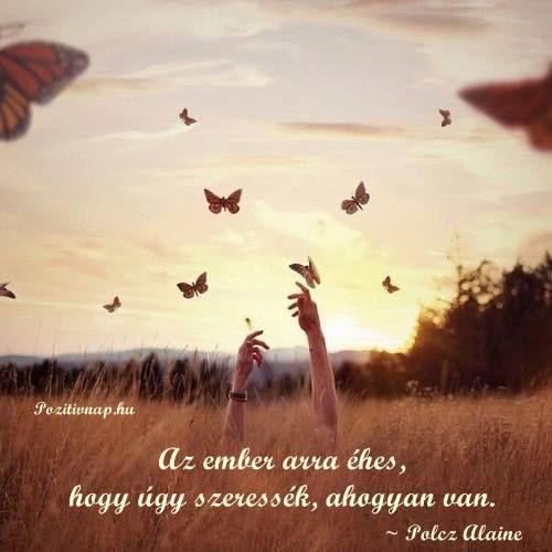 Polcz Alaine idézete a szeretetről. A kép forrása: Pozitív Nap # Facebook