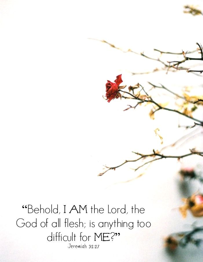 """""""Behold, I am the Lord, the God of all flesh: is there any thing too hard for me?"""" Jeremiah 32:27"""