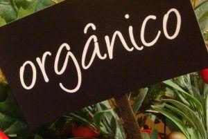 Alimentos Organicos Es Bueno Comerlos?