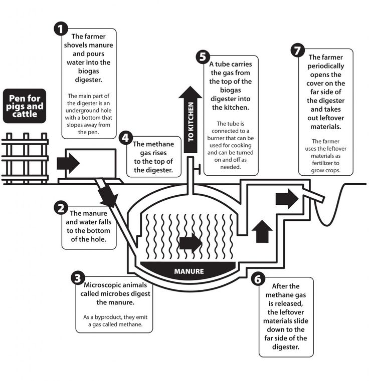 Build Your Own Biogas Generator