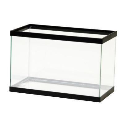 Best 25 10 gallon fish tank ideas on pinterest 1 gallon for Fish tank divider 5 gallon
