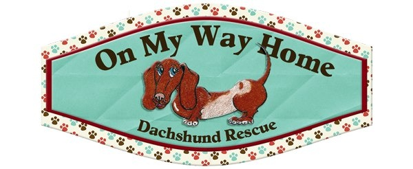 On My Way Home Dachshund Rescue Rescue & More
