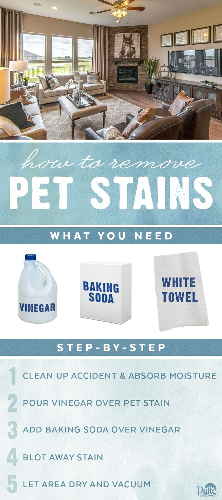 Don't let pet stains get in the way of your beautiful furniture, rug or carpet. Use these tips to remove stains and eliminate odors to keep your home looking great and smelling fresh. | Pulte Homes