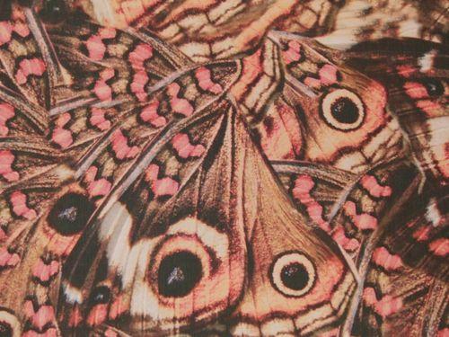 Papillon Silk - Multi