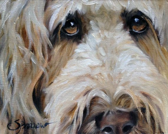 """PRINT Golden doodle Goldendoodle Art Print of Dog oil Painting Gift / Mary Sparrow of Hanging the Moon """"The Golden Girl"""""""