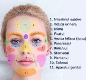 Ce spune fața ta despre sănătate organelor tale?