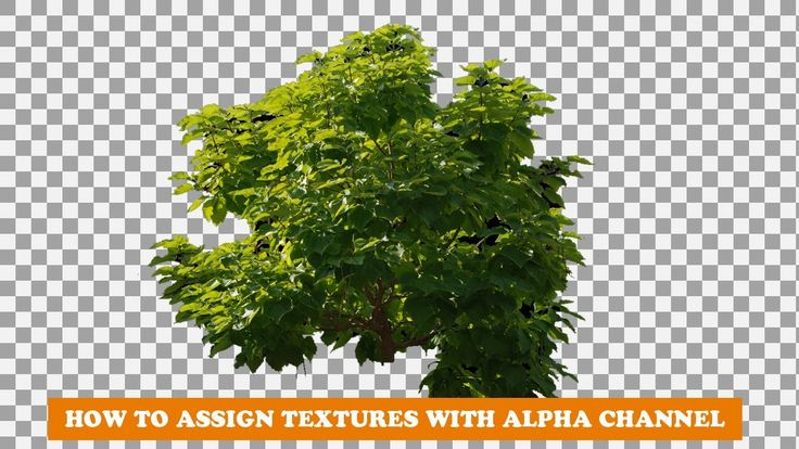 blender tutorial how to apply textures with alpha channel