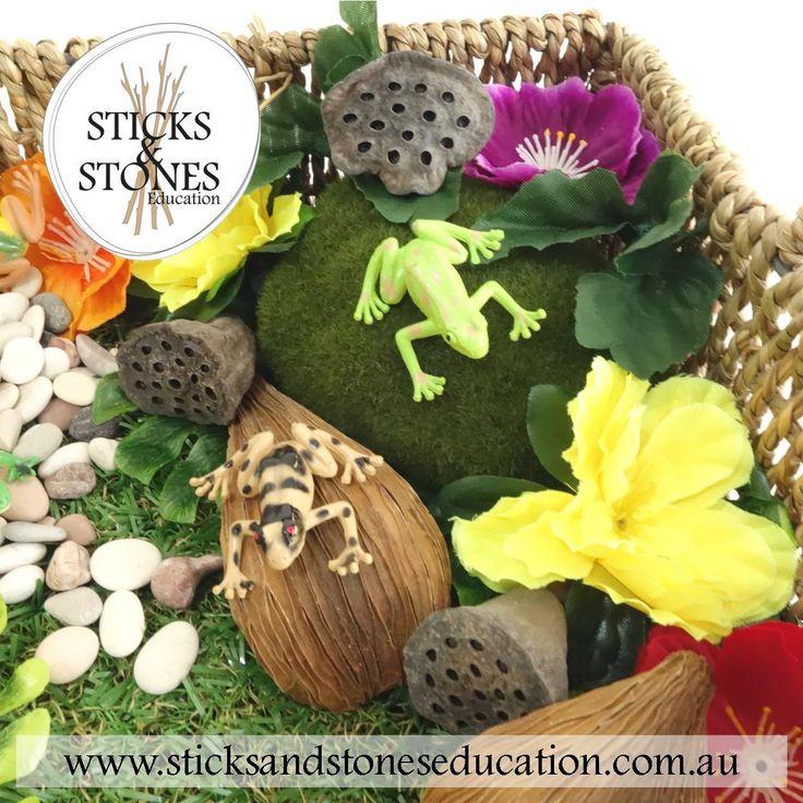 Frog Pond in a Basket
