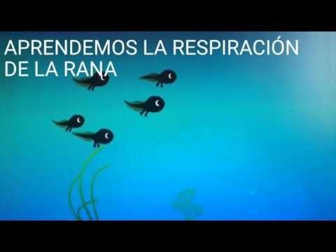 (3) Aprendemos la respiración de la rana. Mindfulnes para niños - YouTube