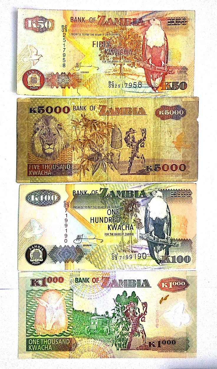 2903 best currency images on pinterest coins banknote and money zambia biocorpaavc