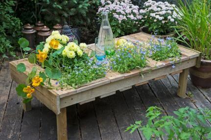 Bepflanzter Tisch – Projekt aus dem Buch «Upcycling für meinen Garten» Basteltipp von familien-welt.de –Schönes für den Garten selbstgemacht -