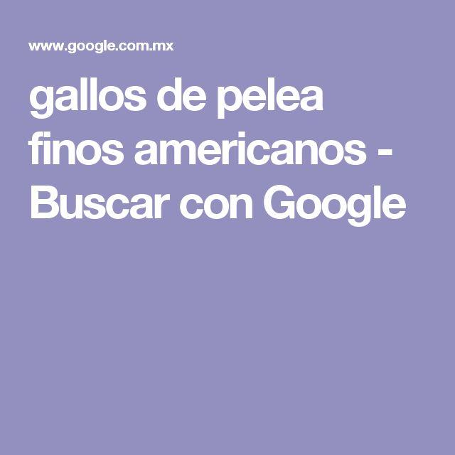 gallos de pelea finos americanos - Buscar con Google