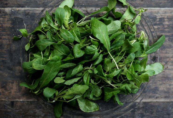 Winter-Portulak: Blattgemüse, willkommener Vitaminspender, ist eigentlich eine Wildform. Gut aufs Butterbrot, in Mixgetränken, auf Cremesuppen statt Schnittlauch, gemixt auch im Topfenkäse. Treibt ab Winteranfang und ist die ideale Ergänzung zum Vogerlsalat. Mehr dazu hier: http://www.nachrichten.at/oberoesterreich/hoamatland/G-riss-ums-G-mias;art160787,1697898 (Bild: Weihbold)