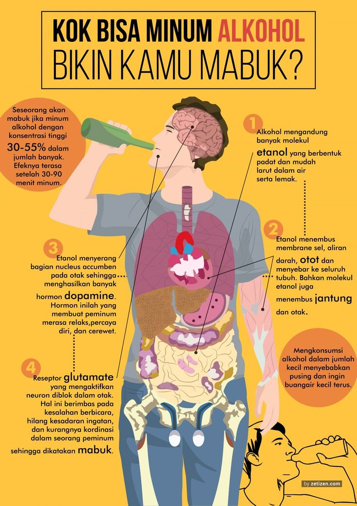 Inilah Proses Minuman Beralkohol Menyihir Tubuhmu - zetizen.com
