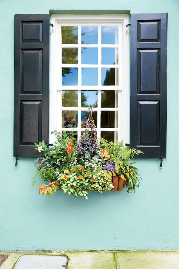 42 best images about window boxes on pinterest for Window garden designs