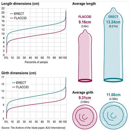 Succ squirt measure size of penis