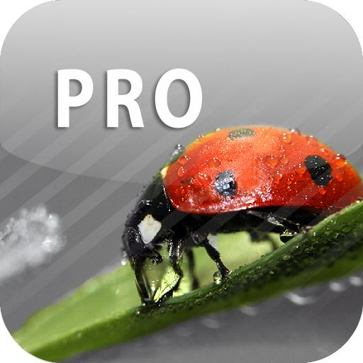 ColorUp Pro -  - http://ehowsuperstore.com/bestbrandsales/appstore-for-android/colorup-pro