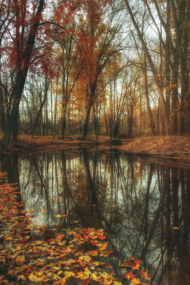 Burton, Michigan (US)   by Aaron Burden This photo as wallpaper on your smartphone? Get the app now!