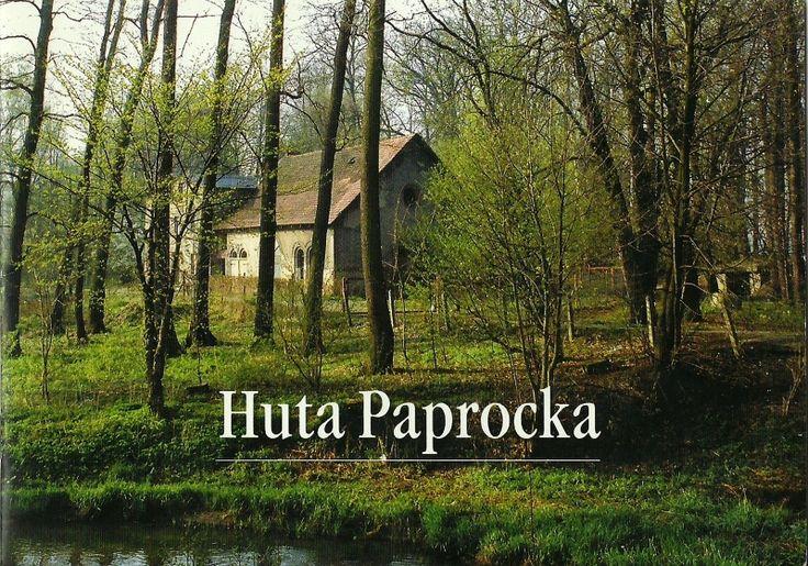 http://images49.fotosik.pl/262/53f5ca6025b1c283.jpg