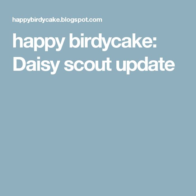 happy birdycake: Daisy scout update