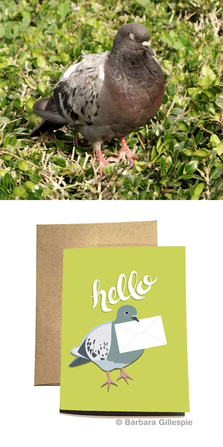 I caught this pigeon asleep and made him into a greeting card (on the right). Blank inside / Printed in NYC / Re-pin for later
