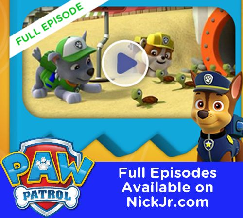 Catch up on PAW Patrol with full episodes, free to watch on NickJr.com!