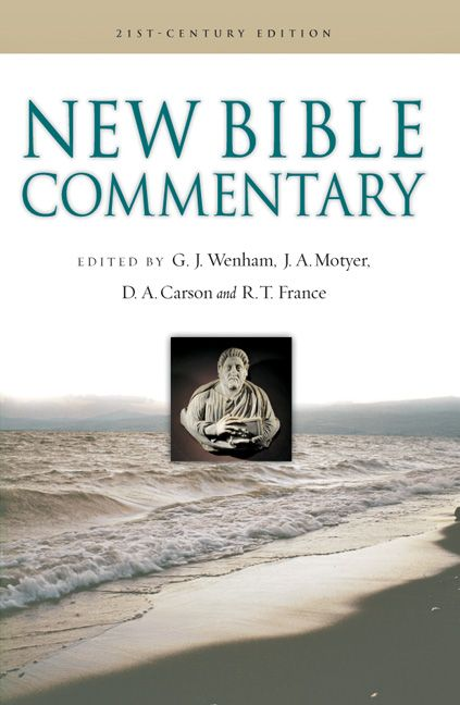 Don't necessarily need this particular commentary (although I am partial to InterVarsity Press), but a good Bible commentary would be awesome