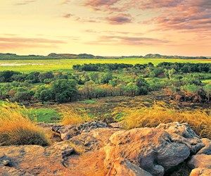 Kakadu : : East Alligator River floodplains | qantas travel insider