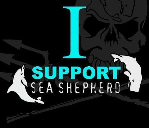 17 best images about sea shepherd on pinterest dolphins conservation and the japanese. Black Bedroom Furniture Sets. Home Design Ideas