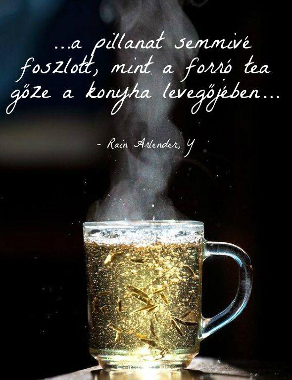 Tea forró foszlott gőz ekönyv szöveg Y Rain Arlender http://syllabux.hu/books/y?id=164