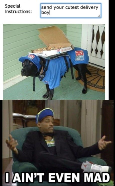 """""""Here's your pizza. That will be 22 belly rubs plus tax.""""  // funny pictures - funny photos - funny images - funny pics - funny quotes - #lol #humor #funnypictures"""