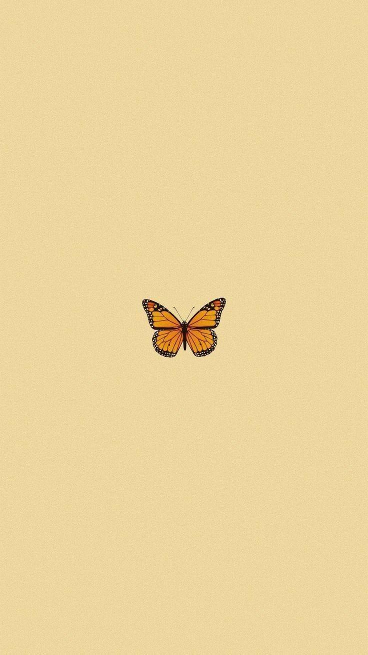 Me Siga Para Mais Ideias Follow Me Butterfly Wallpaper Iphone Butterfly Wallpaper Emoji Wallpaper Aesthetic butterfly emoji wallpaper
