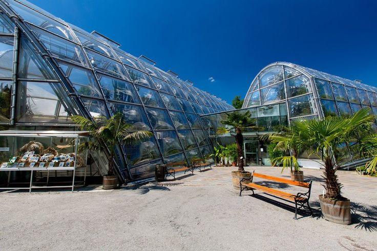 FUCK YEAH GREENHOUSES.: Botanical garden, Graz, via Graz Tourismus