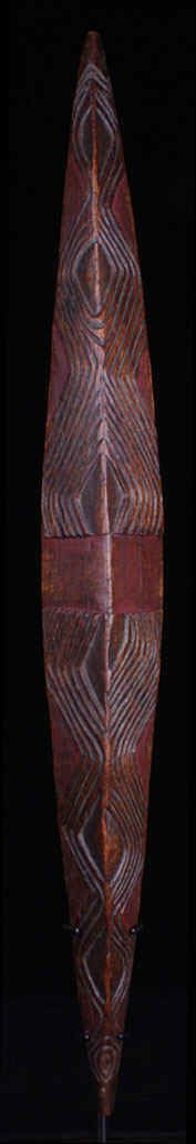 19TH C. ABORIGINAL VICTORIA PARRYING CARVED WOOD SHIELD, NSW (TRIBALMANIA.COM)