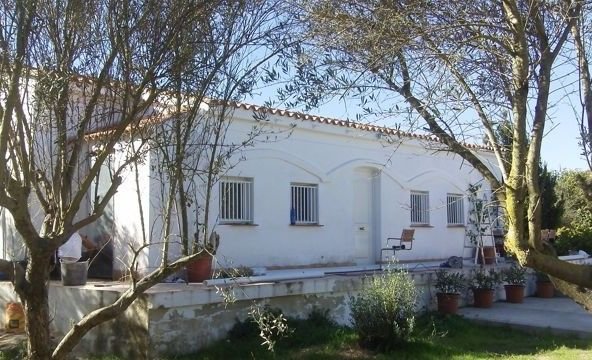 Buy a country home in spain like this one with 4 acres, near Lliria valencia and only £40,000!