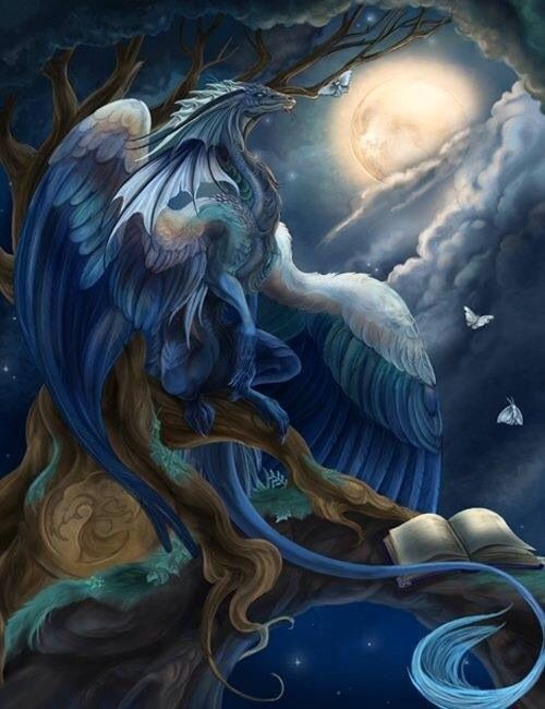 Blue Dragon (bird?)