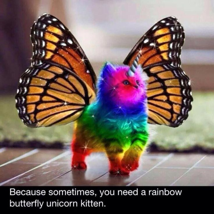 """so sometimes u need this  Friend sent me this via Facebook and said """"this reminds me of you"""""""