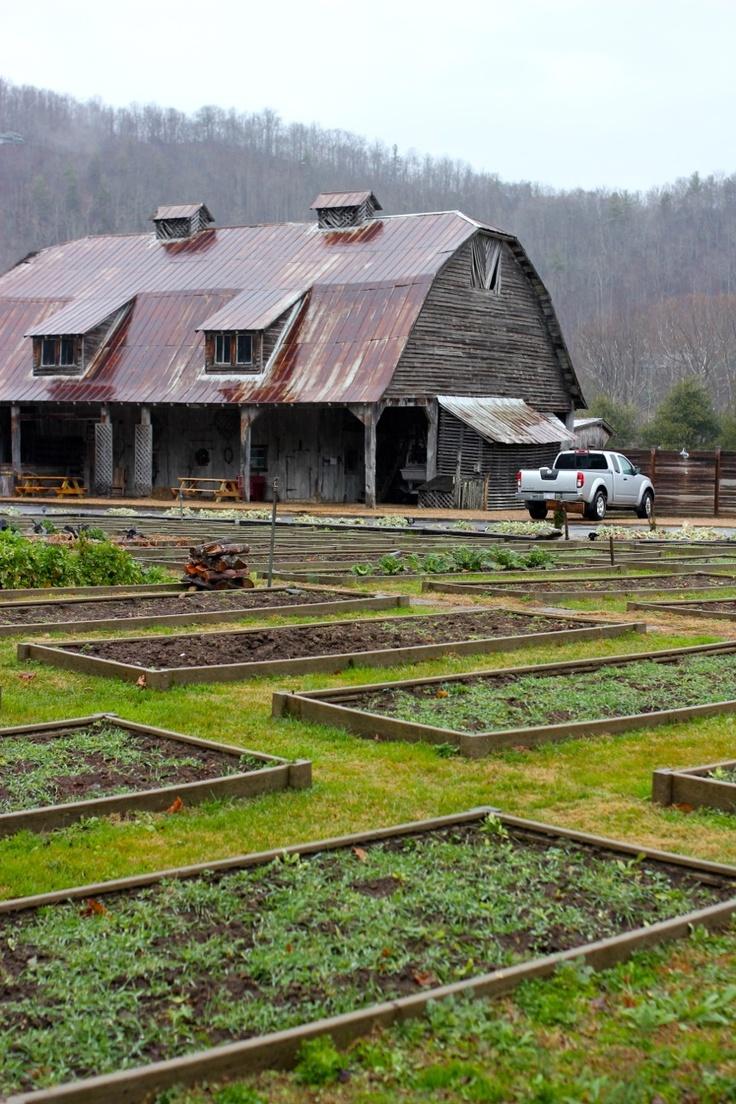 Mast Farm Inn barn raised beds, Valle Crucis NC