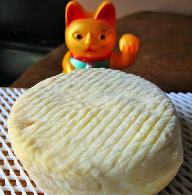 fromage fait maison, faire son fromage, laiterie de paris, blog fromage, blog fromage maison, faire un fromage lactique, affinage maison, affinage fromage, affinage frigo
