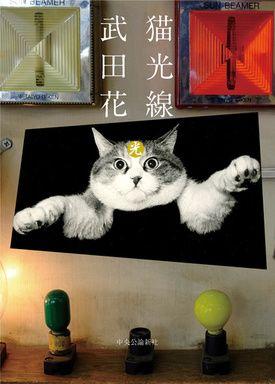 ブックレビュー猫光線