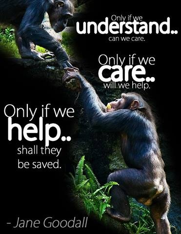 A person cannot help unless they care and cannot care until they understand.  Animal welfare education matters.