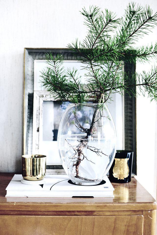 Maljakkomänty / Christmas decor the simple way
