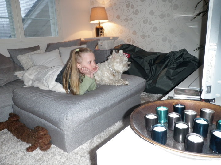 The Dog Whisperer is a must show in our house ;) Charline and Bella not missing a beat :D