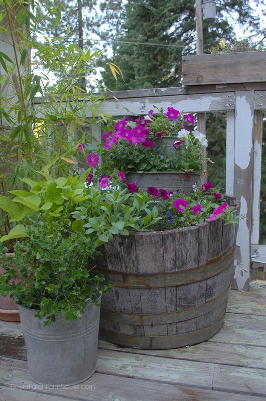 Old buckets wine barrel planter container gardening for Diy wine barrel planter