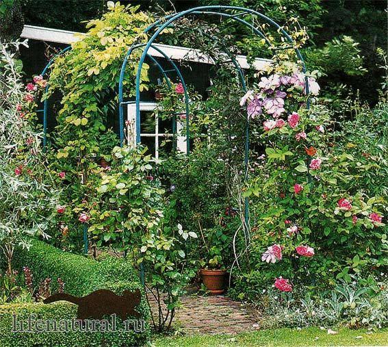 Простые идеи для украшения вашего сада